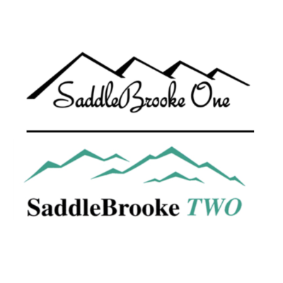 saddlebrooke one and two
