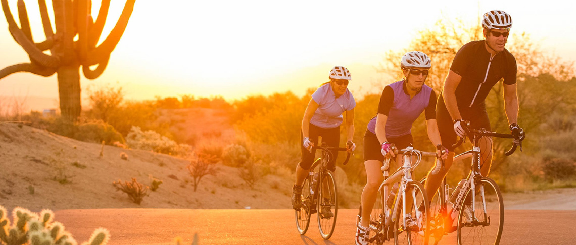 cyclists riding bikes in the sunset